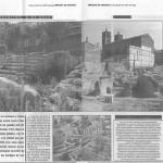 Apudepa solicita el traslado de la colonia de gatos que afecta a la conservación del Teatro Romano